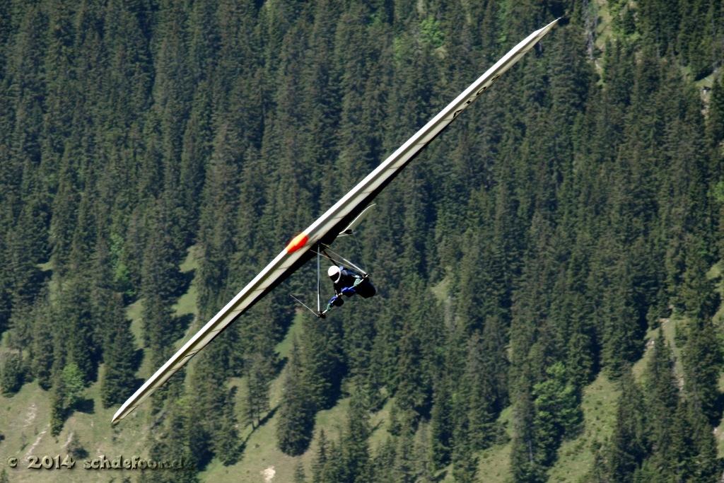 Drachenflieger vor Waldhang