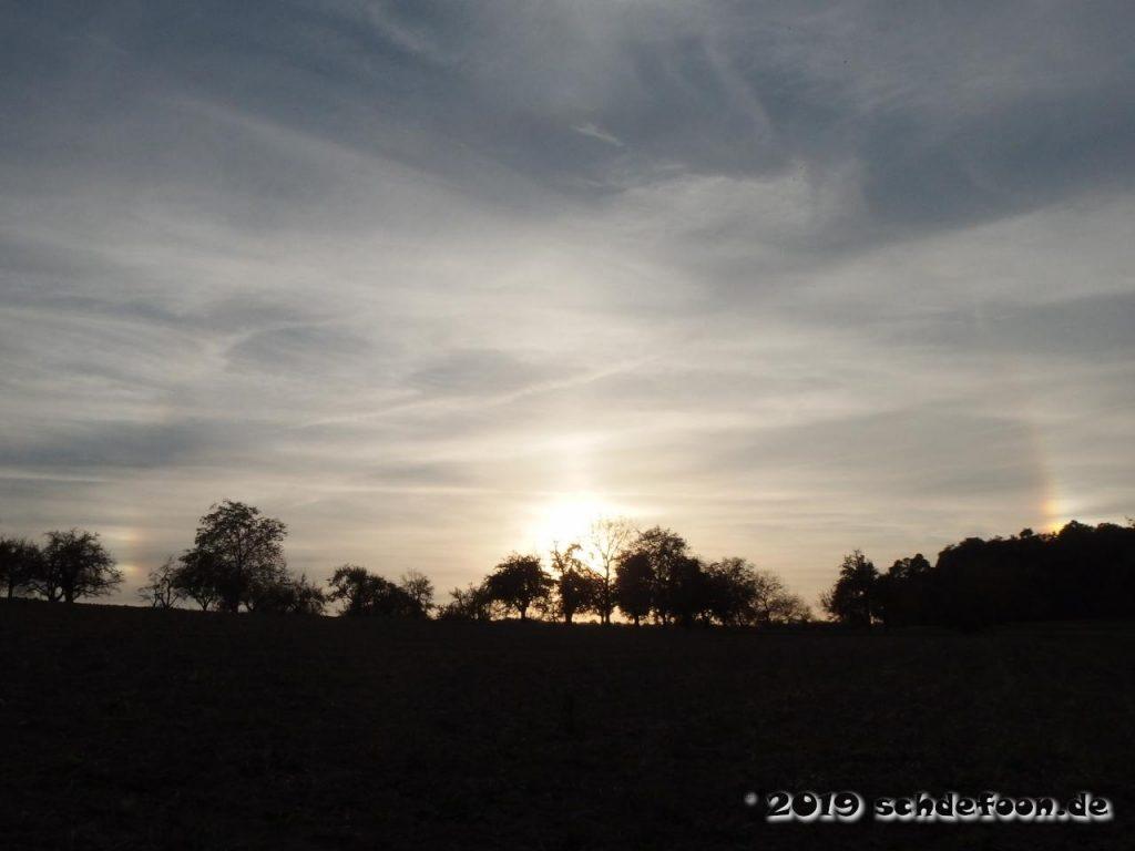Sonnenuntergang mit einem Halo und zewi Nebensonnen hinter einer Baumgruppe