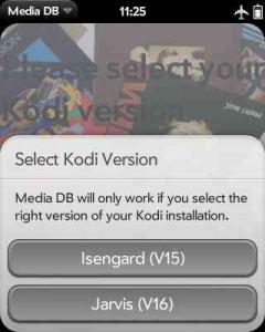 Ein Dialogfenster ermöglicht die Auswahl der Kodi-Version