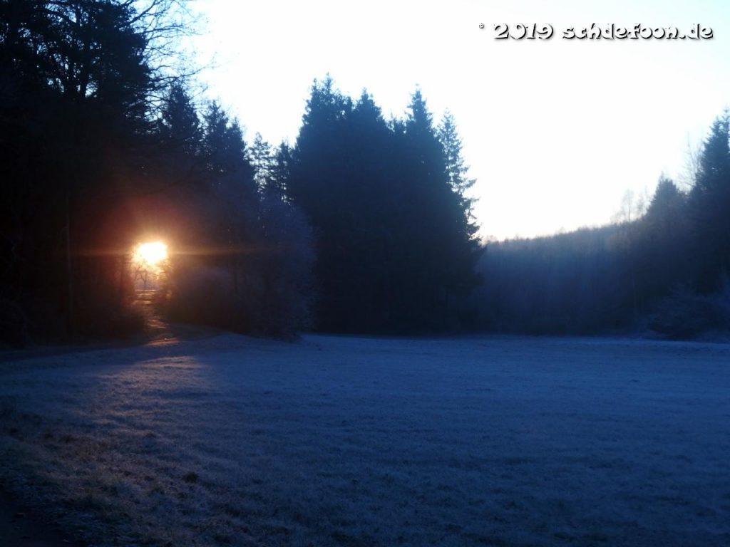 Die aufgehende Sonne zeigt sich in einer Baumlücke im dichten Wald